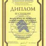 Диплом Андреенко Е.А.1